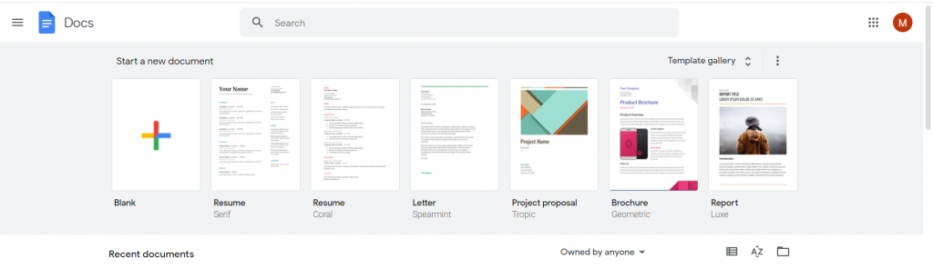 Google Docs Review Screenshot