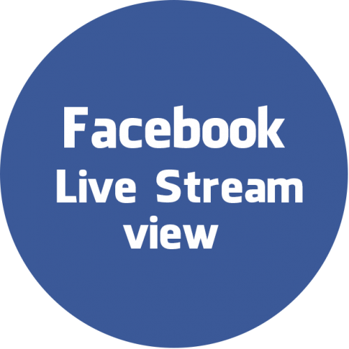 facebook live stream view